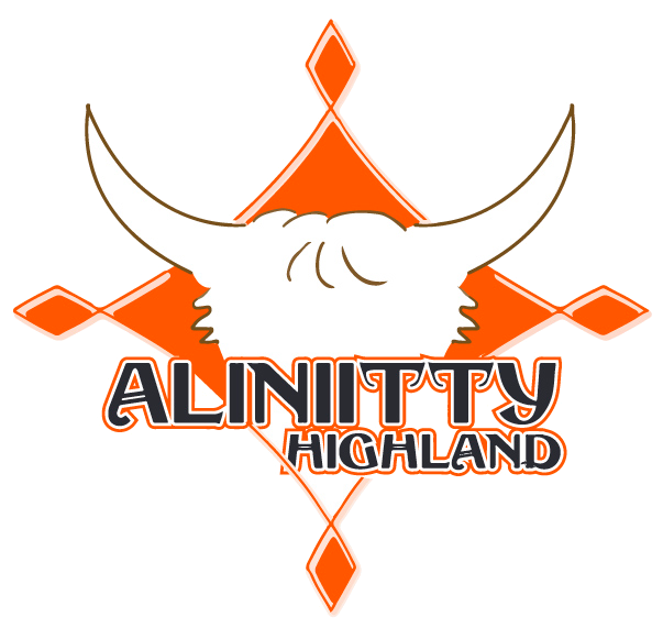 Aliniitty Highland